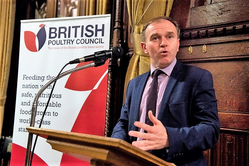 George Eustice MP in the House of Commons